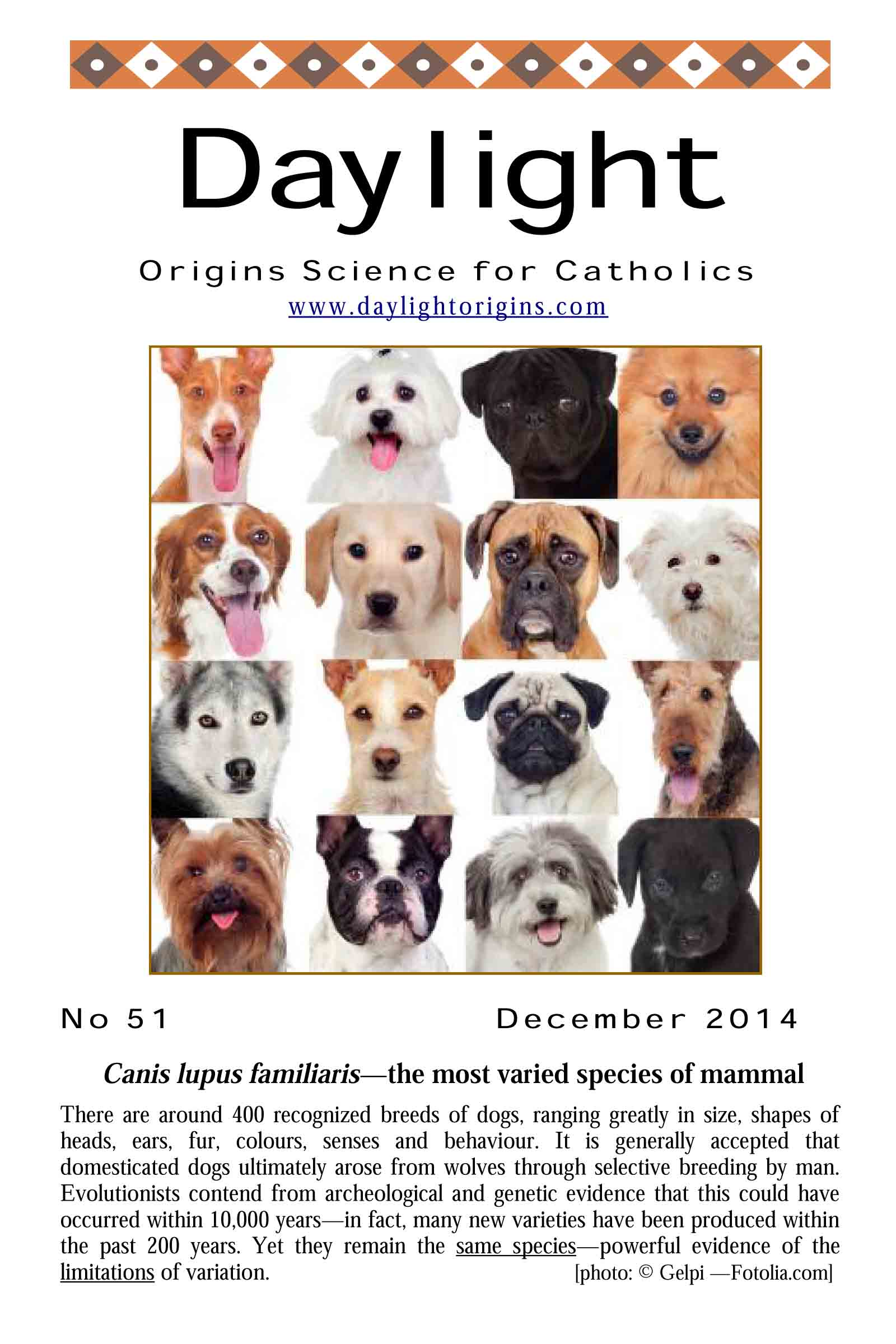 Dayligh magazine edition on dog species